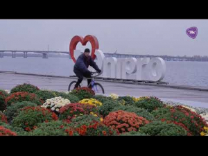 Проморолик-2019